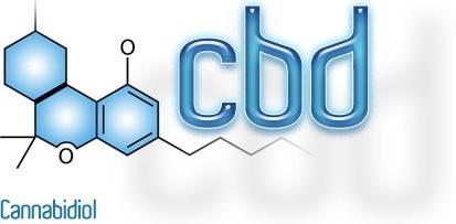 Co je CBD olej a jak ho užívat?