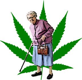 Konopí – legalizovat nebo léčit jen bohaté?